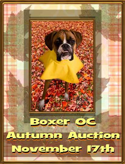 2nd Annual Autumn Auction